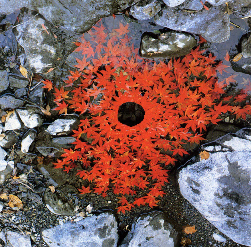 land-art-andy-goldsworthy_лэнд арт энди голдсворфи.jpg